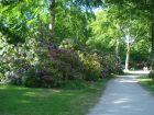 graal-mueritzer-wege-rhododendronpark