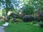graal-mueritzer-rhododendronpark-direkt-hinter-der-ostsee-1