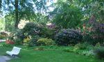 Der Graal-Müritzer Rhododendronpark befindet sich im Ortsteil Graal